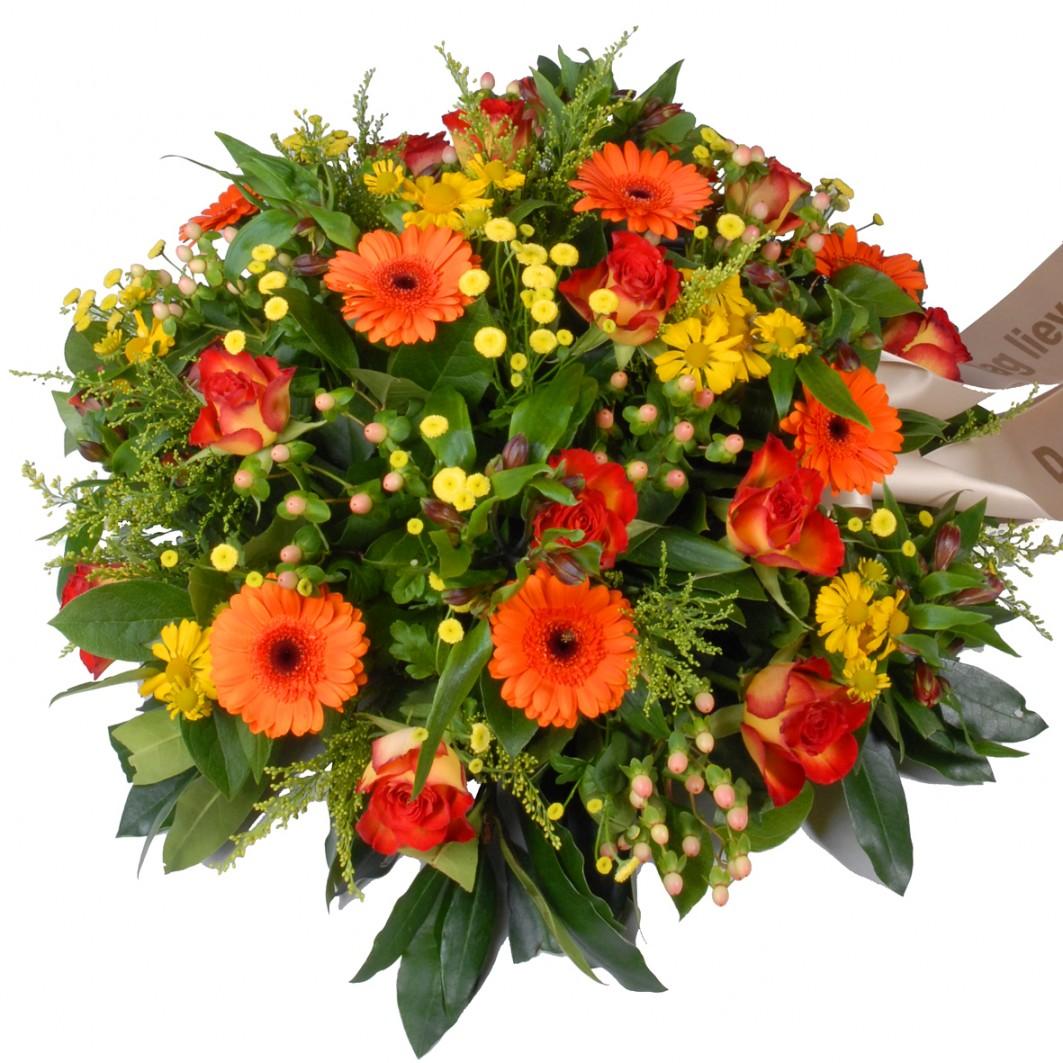 Rouwbiedemeier geel - oranje
