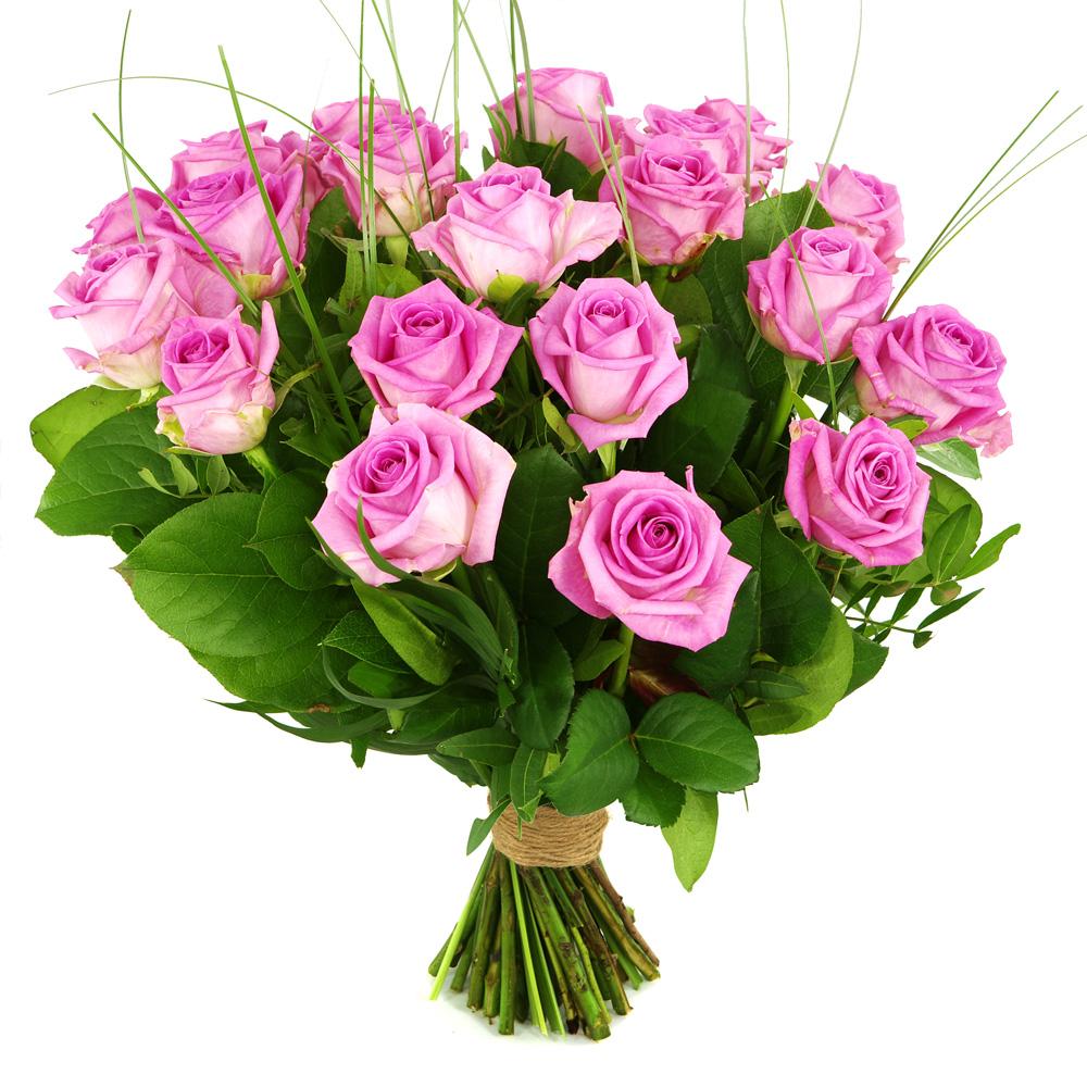 20 Roze rozen