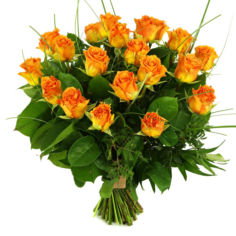 20 Oranje/zalm rozen