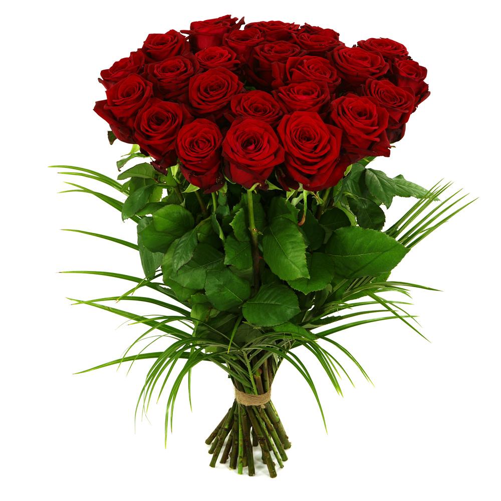 25 Lange rode rozen