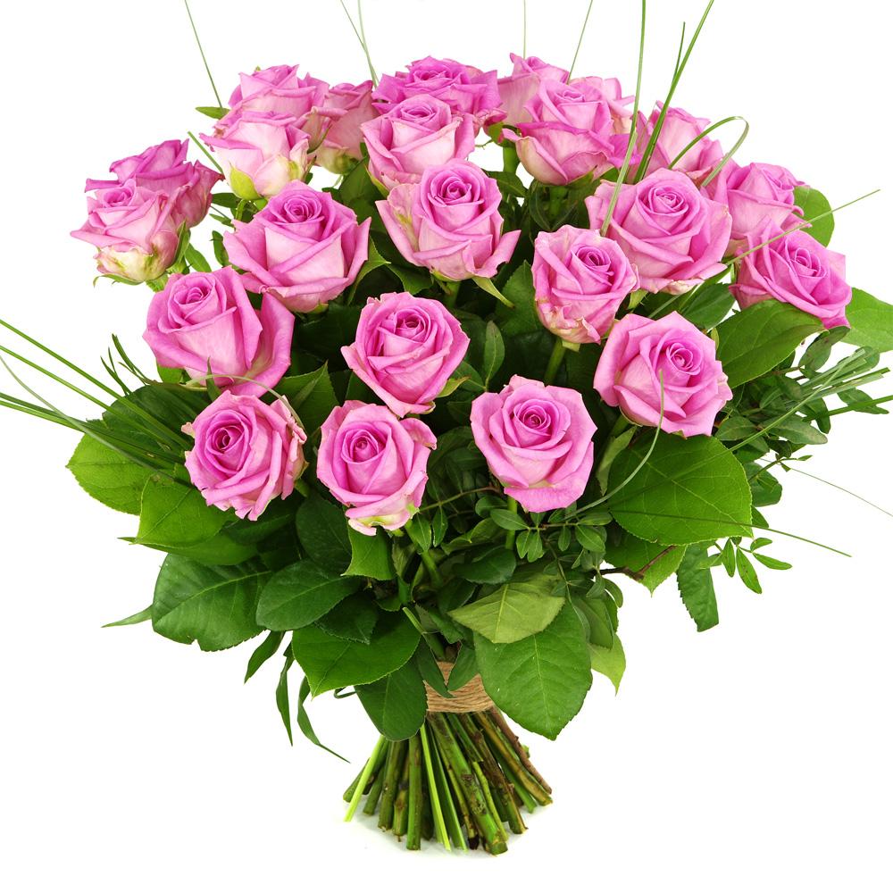 25 Roze rozen