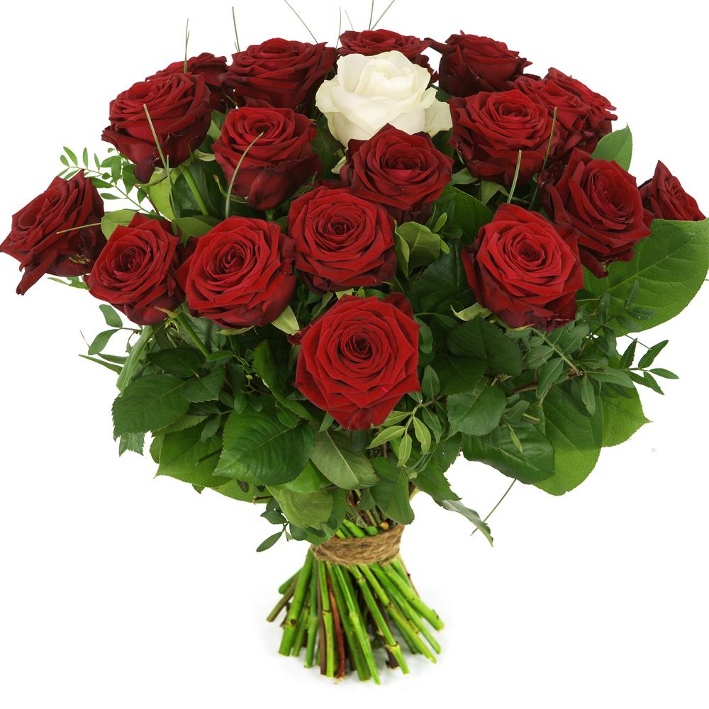Boeket rode rozen en ��n witte roos