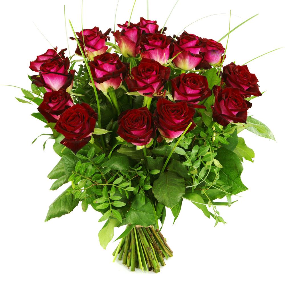 20 Rode rozen bezorgen kopen doe je bij van der Voort