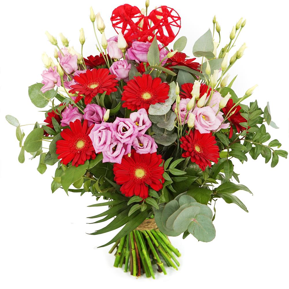 Planten Romantische bloemen roze rood