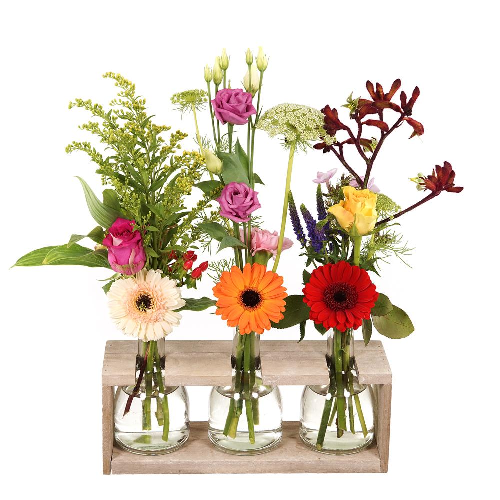 3 flessen met bloemen in houder bezorgen