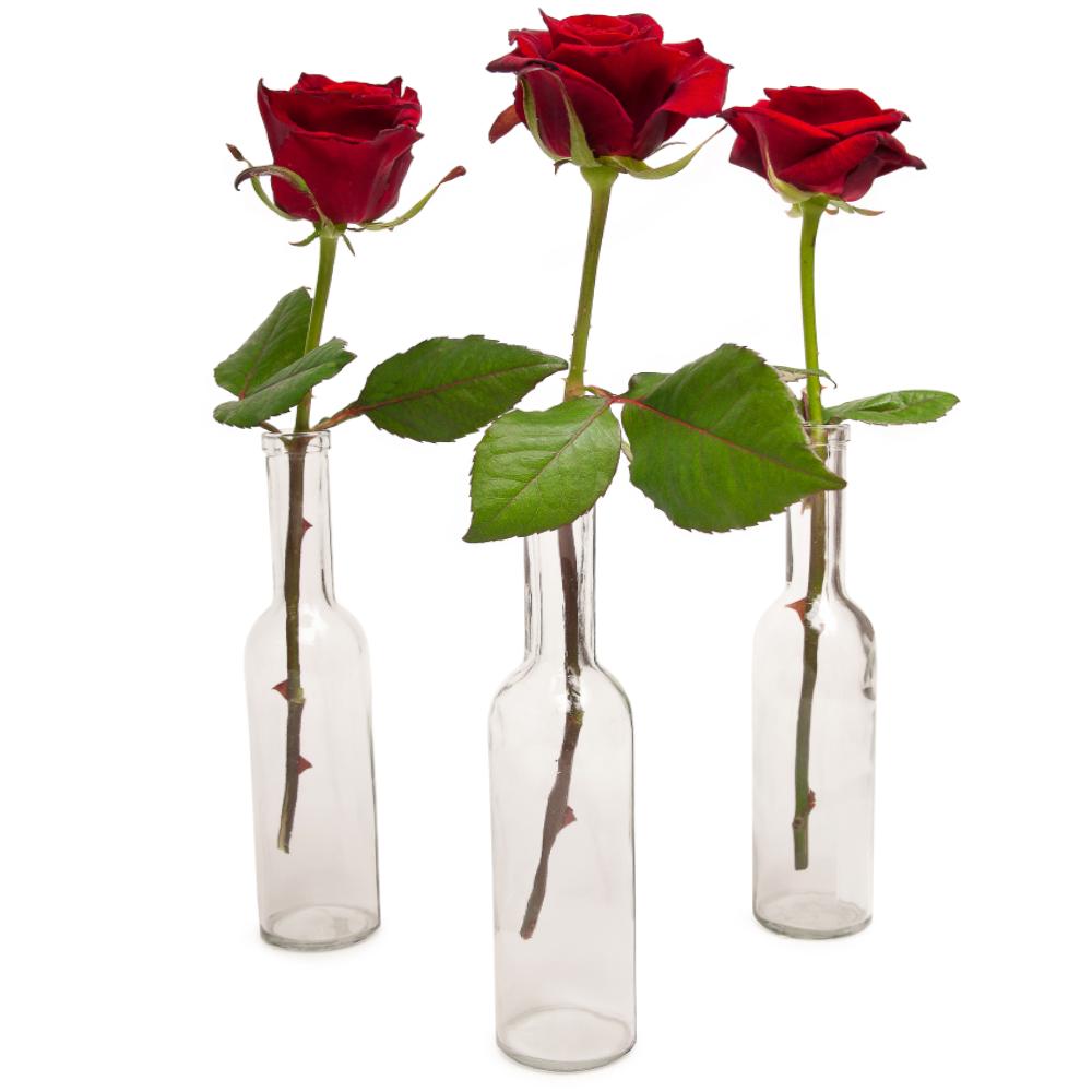 Rode roos met glazen vaas