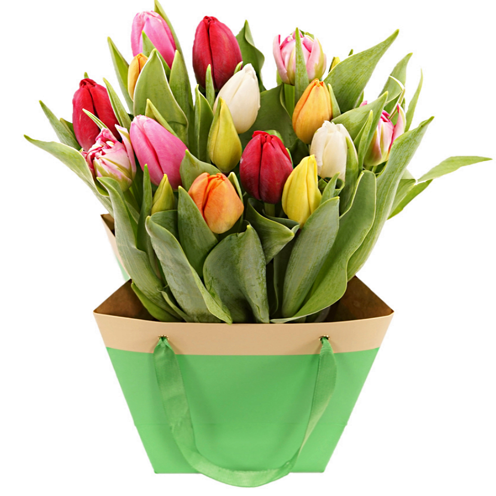 Mixed tulpen in tas bezorgen