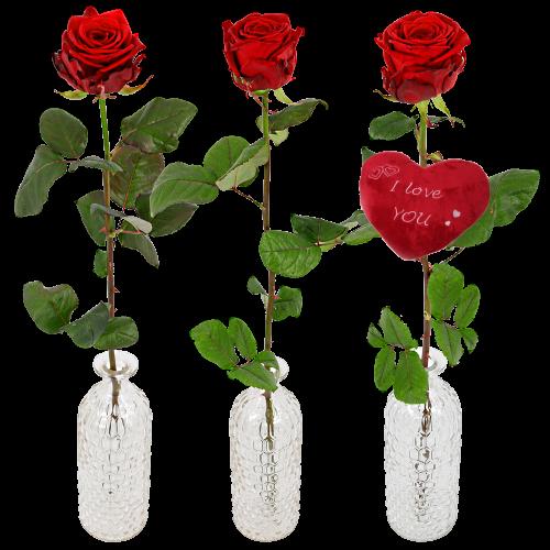 Feestelijke gelegenheden Cadeaus