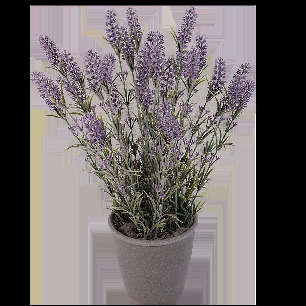 Grote zijde lavendel in pot
