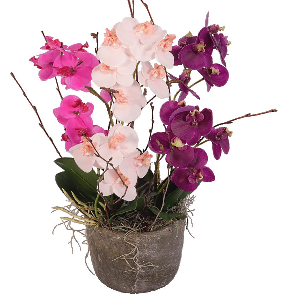 Zijde orchidee�n in sierpot
