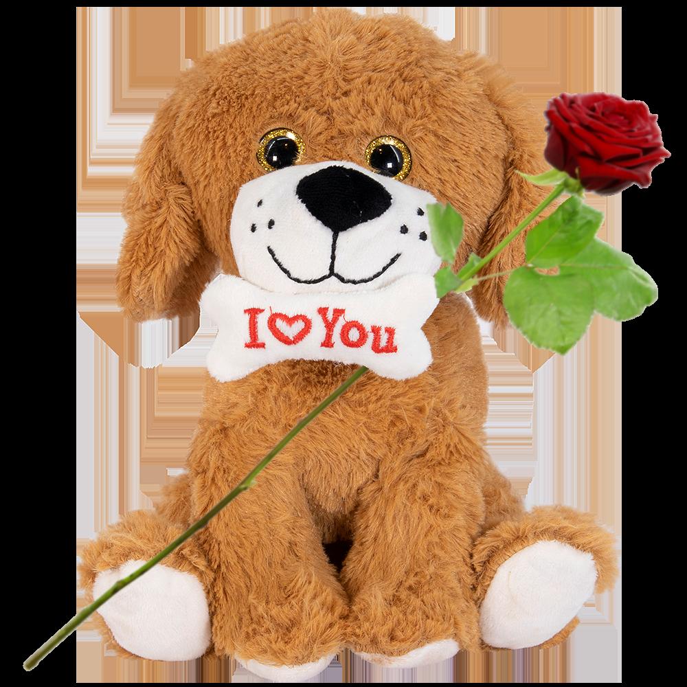 Knuffelbeer hondje I love you bot